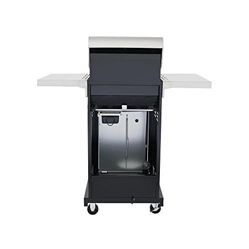 Evolution Propane Grill with Infrared